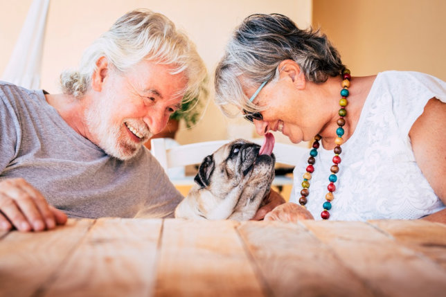 Creative Ways to Support Your Senior with Alzheimer's